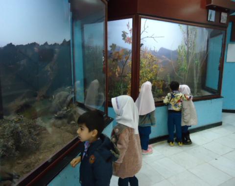 بازدید نوآموزان از موزه حیات وحش-آذرماه